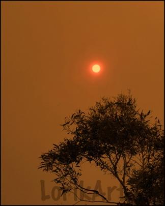 6red-sun-40aweb
